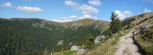 Panorama0